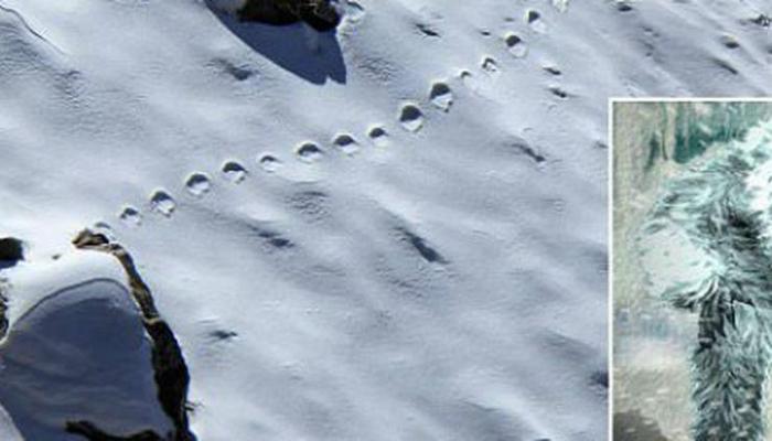 Hindistanda dağlarda qar adamının ayaq izini aşkar edilib