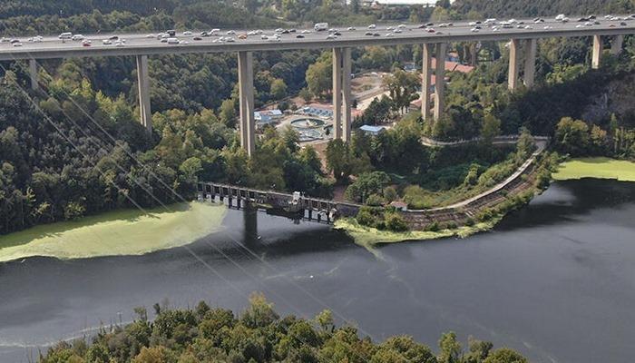 İstanbul'da Elmalı Barajı yine yeşile büründü