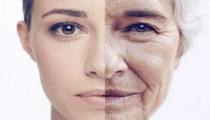 Какие продукты вызывают старение