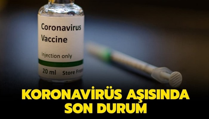 Koronavirüs aşı çalışmalarında son durum nedir? Koronavirüs aşısı ne zaman çıkacak?