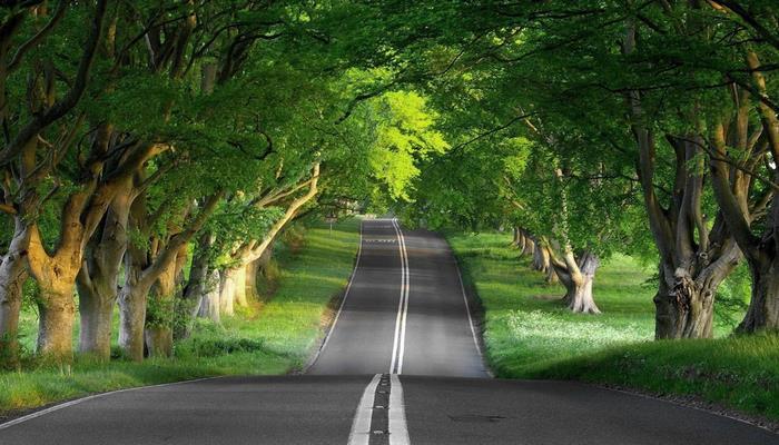 Lənkəranın kənd yolları əsaslı təmir olunur