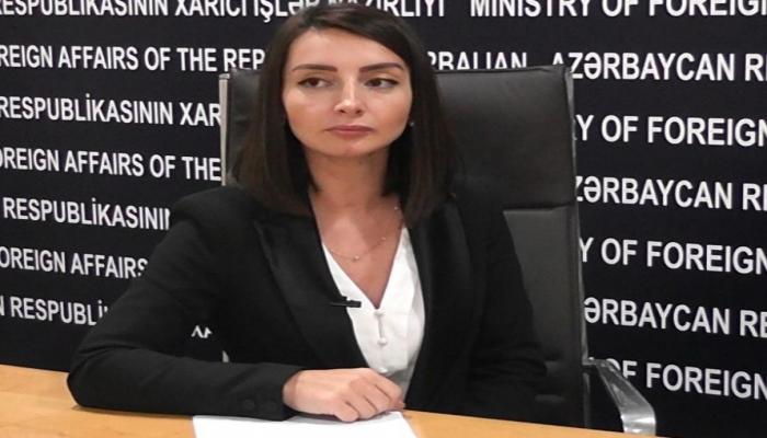 Лейла Абдуллаева: На протяжении стольких лет Армения так и не смогла проявить политическую волю