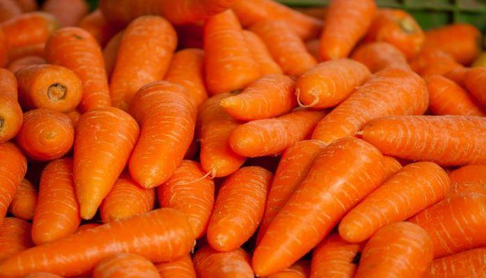 Медики назвали 5 удивительных полезных свойств моркови