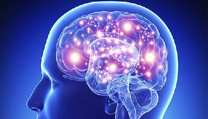 Названы эффективные способы замедлить старение мозга