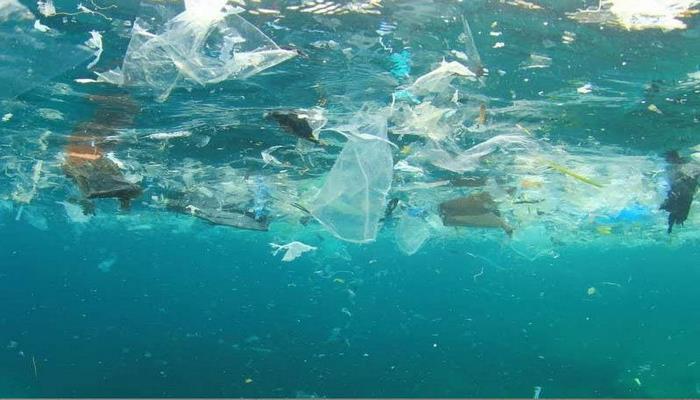 Okeanda plastik tullantıların miqdarının 10 dəfə çox olduğu müəyyənləşib