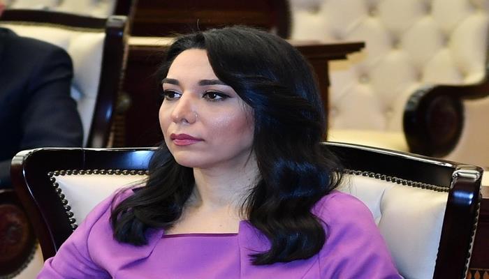 Ombudsman Ermənistanın təxribatı ilə bağlı beynəlxalq təşkilatlara hesabat göndərdi