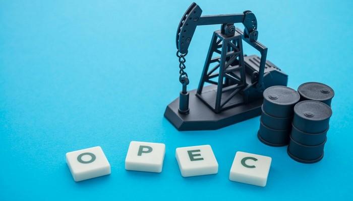 OPEC+ neft hasilatının maydan tədricən bərpa olunması barədə razılığa gəlib