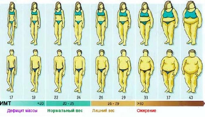 Ожирение при нормальном весе: неужели такое возможно?
