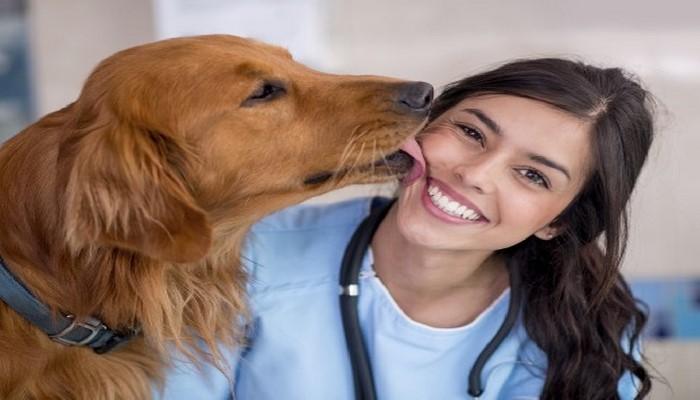 Почему медики рекомендуют избавиться от привычки целовать собаку
