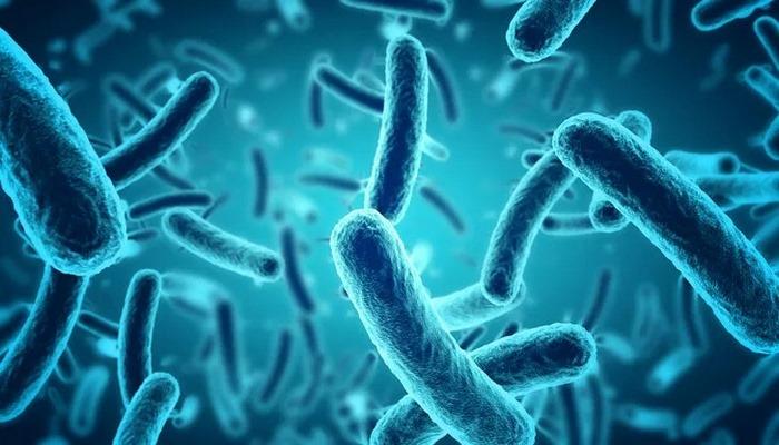 Potansiyel koronavirüs tedavisinde insanlı testlere başlandı
