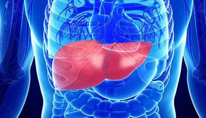 Qaraciyərin detoksikasiya funksiyasını dəstəkləyən QİDALAR