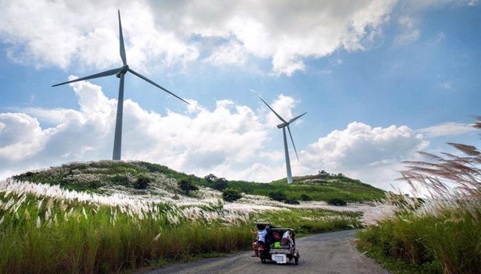 """Rüzgar enerjisi, cari açığı kapatmada kritik role sahip"""""""