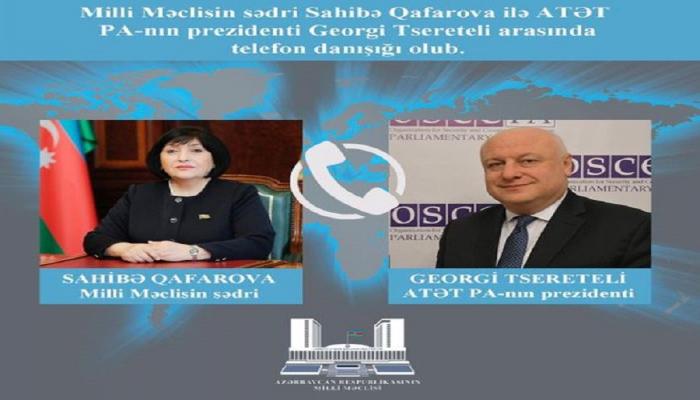 Состоялся телефонный разговор Сахибы Гафаровой с президентом ПА ОБСЕ