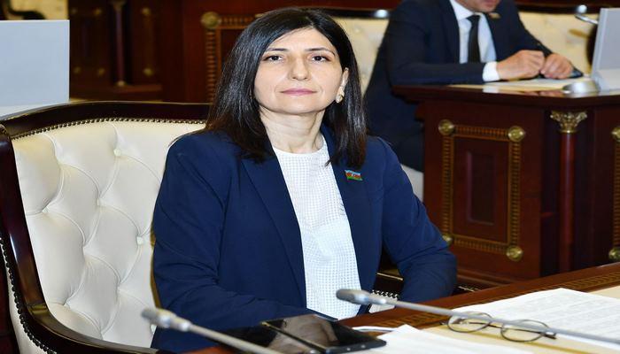 Севиль Микаилова: Недавние события должны стать очередным уроком для Армении