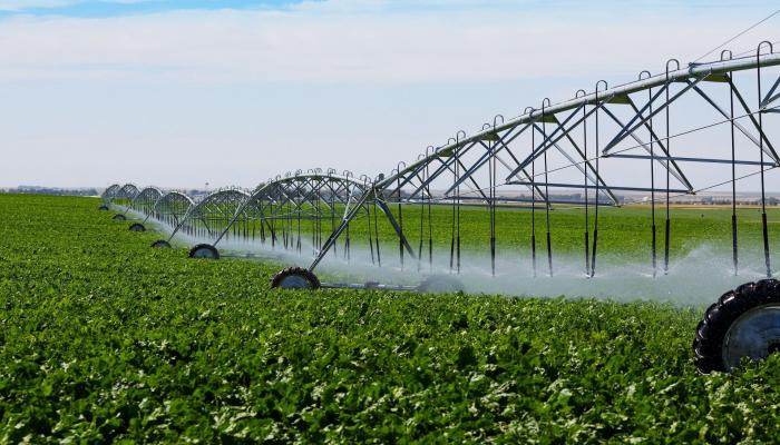 İlin sonunadək Azərbaycanın 10,7 min hektar ərazisinin su təminatı yaxşılaşdırılacaq