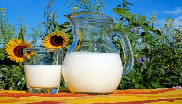 Ученые: способность переваривать молоко – это генетическая мутация