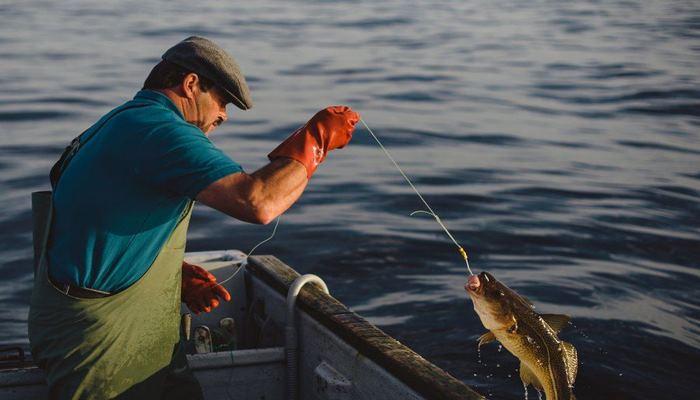 В Азербайджане завершается мораторий, введенный на отлов рыбы