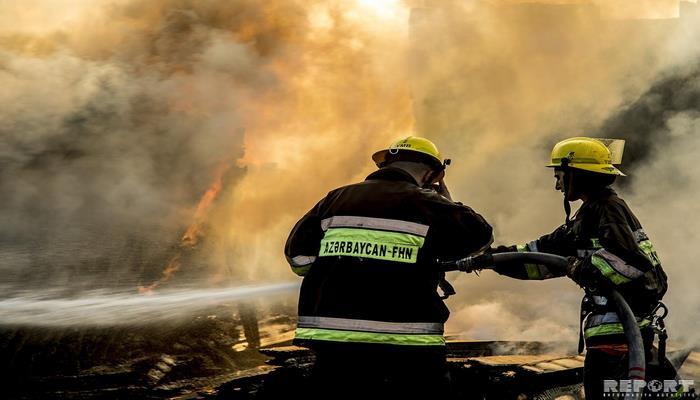 В Баку горит парк