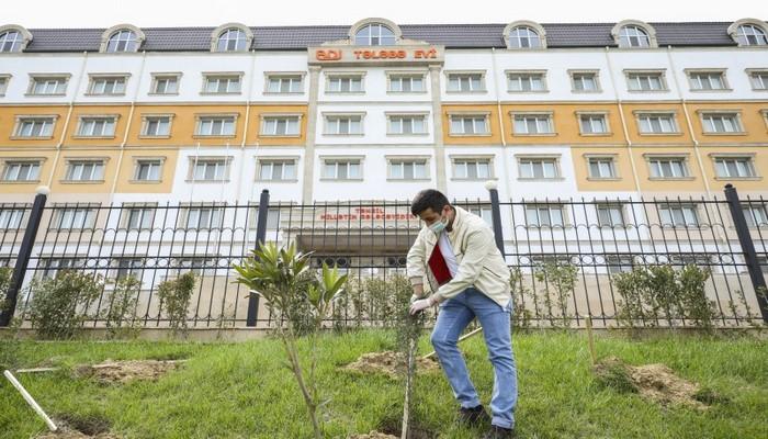 В БГУ прошла акция по посадке деревьев