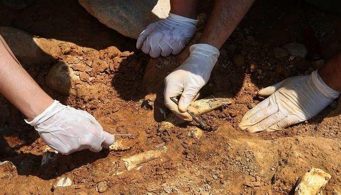 В Израиле нашли следы самой древней кремации