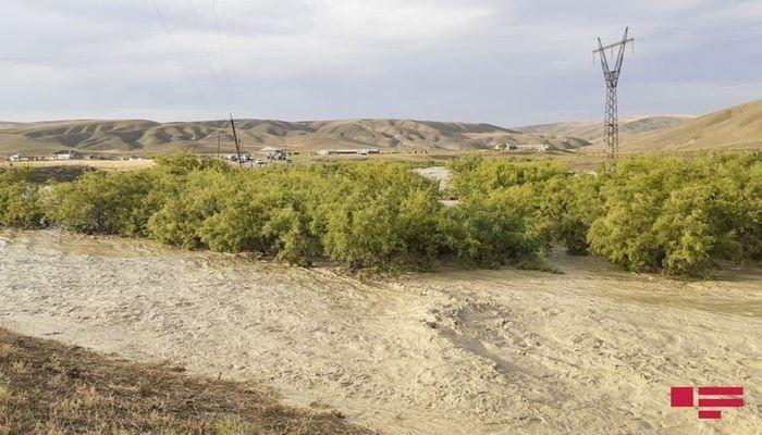 В Шамахы сель затопил озеро, погибло 15 тонн рыбы