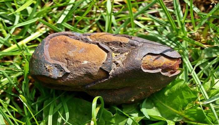 В Японии нашли осколки недавно упавшего метеорита