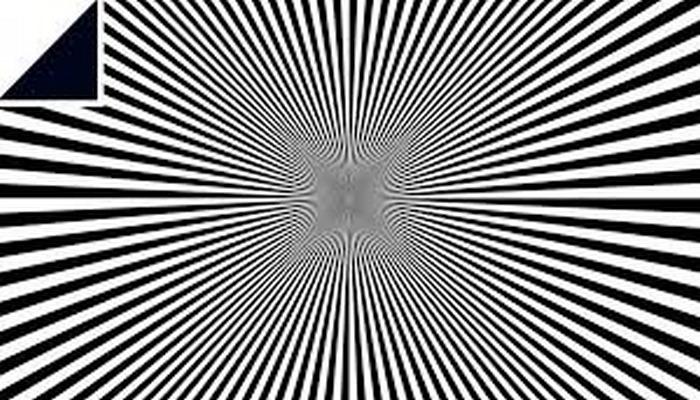 Yapon professorunun optik illüziyaları hər kəsi çaşdıracaq.