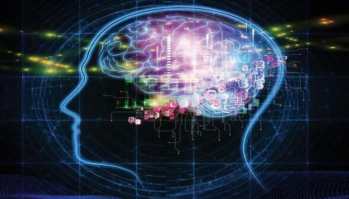 Zəif işıq beyin strukturunu dəyişdirir - Ailmlərdən xəbərdarlıq