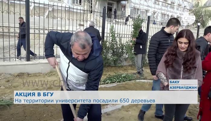 На территории Бакинского госуниверситета посадили 650 деревьев