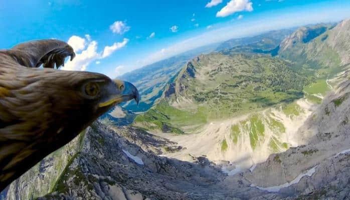 Alp dağları qartal gözü ilə