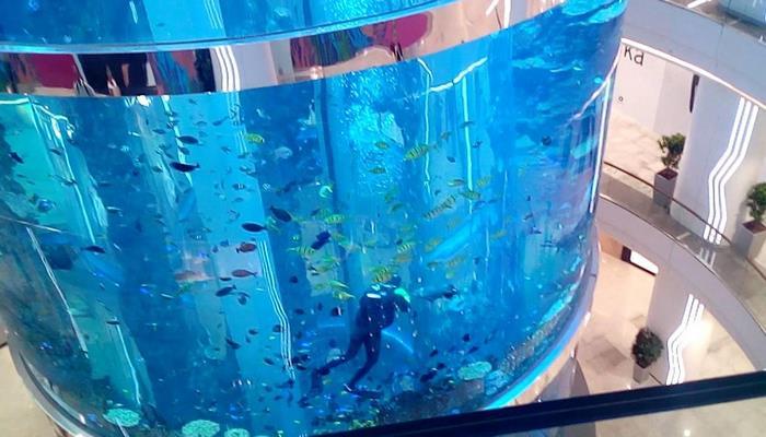 В торговом центре прорвало 24-метровый аквариум