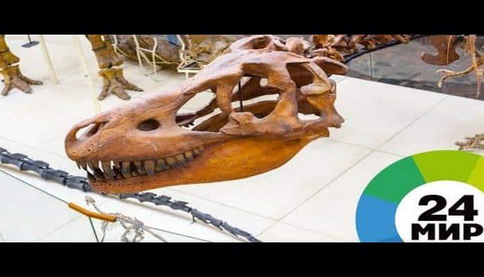 Кости за €1,5 млн: в Париже с молотка уйдут скелеты редких динозавров