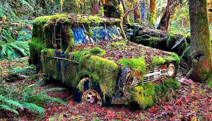 Нашли заброшенную машину и завели впервые за 60 лет